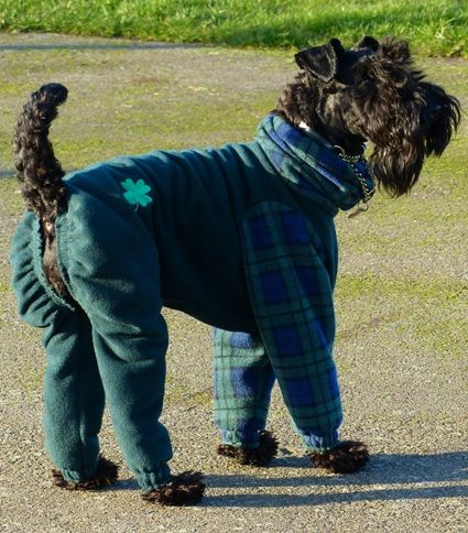 Dog onesies petswear, Tartan Dog Jackets, Dog Pyjamas, Dog Bodysuits, Fleece All in One Dog Coats K9 CleanCoats Ltd