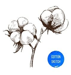 Vector image of Cotton plants vector, includes symbol, plant, clothes, icon & shop. Illustrator (.ai), EPS, PDF and JPG image formats.