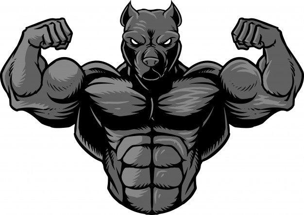 Strong Pitbull 2 Gym Art Pitbull Drawing Pitbull Art
