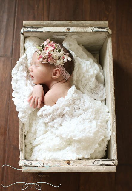 Newborn girl in the basket! The Farmer's Nest: Photography