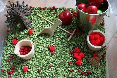 apple sensory bin: apple sensory bin