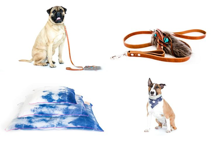Modern Dog Beds, Collars, and Accessories from DOG & CROW in dining collars leads beds furniture