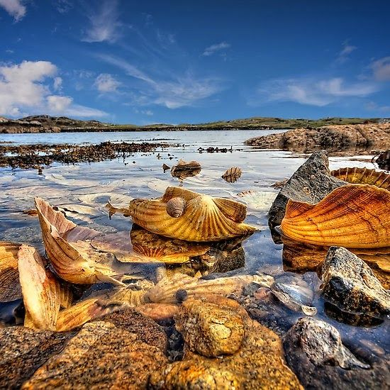 Amazing Places To See Scotland: 9 Best Places To Visit Images On Pinterest