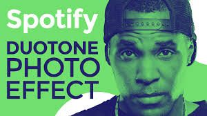 Image result for duotone