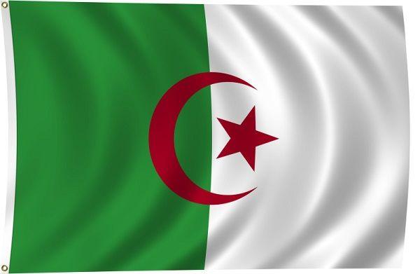 علم الجزائر يرفرف Yahoo Image Search Results Algeria Flag Flags Of The World Flag Background