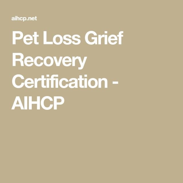 Pet Loss Grief Chat Room