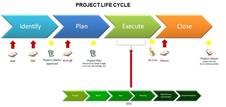 project planning execution and closure essay Project management life cycle (pmlc) model (initiation, planning, execution, and closure) this week in your readings you have expanded your knowledge regarding the project management life cycle (pmlc) model (initiation, planning, execution, and closure.