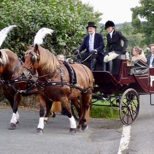 Horse & Carriage Hire | Horse and Carriage Wedding Transport | #horseandcarriagehire #transport www.guidesforbrides.co.uk