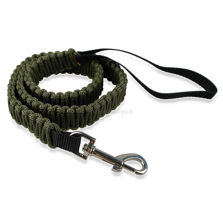 Nylon Braided Pug Leash (5 colors)
