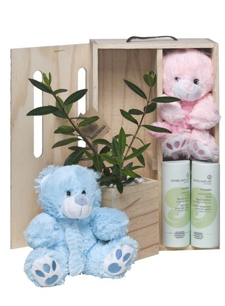 Pampering product with teddy and living tree.