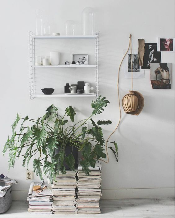 Gorgeous green plant and autumn styling by @elveravanschaik Green up your life! Plants clean your indoor air, 25Lamp may clean your conscience as it's sustainable design. The 25Lamp was designed by the Kovac Family. Black and white Scandinavian livingroom with string shelf.