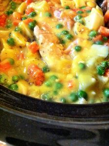 Chicken Pot Pie in the Crock Pot - Then put in a Pie Crust - Makes 2 Large Pies