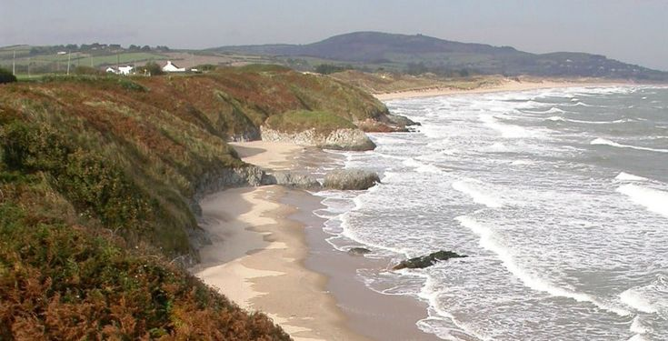 Image result for brittas bay
