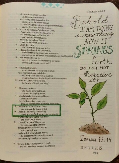 Isaiah 43:19 by Paula-Kay Bourland