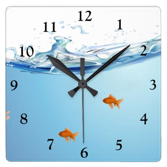 1000 id es propos de aquarium pour poisson rouge sur for Taille aquarium poisson rouge