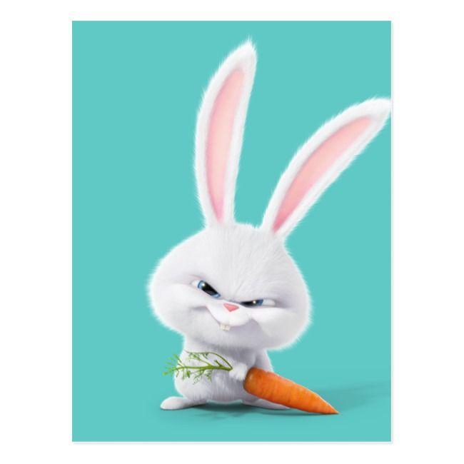 Secret Life Of Pets Insanely Cute Snowball Postcard Zazzle Com Cute Cartoon Wallpapers Cute Bunny Cartoon Secret Life Of Pets