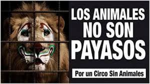 Prohíben circos con animales en Guerrero. #CircosSinAnimales.               http://www.unotv.com/noticias/estados/suroeste/Prohiben-circos-con-animales-en-Guerrero-259216/