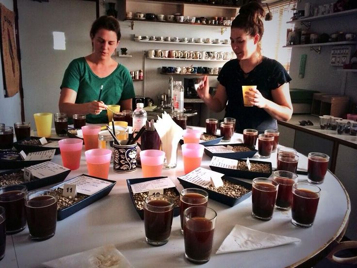 Jen & Kaya Selection cupping fresh crop in Bangalore