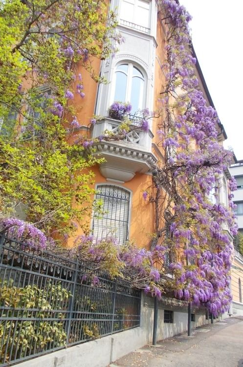 Zona in Moncalieri, Torino