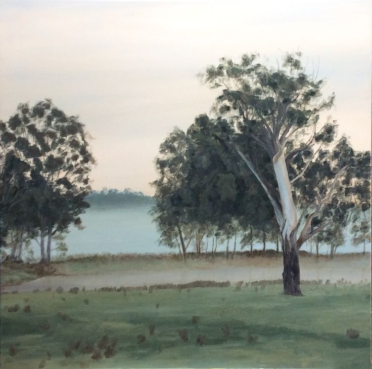 Foggy morning, Wangaratta billabong