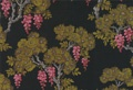 Cole and SonDesign Products, Stunning Wallpapers, Sons Wallpapers, Black Wisteria, Wonder Wallpapers, Amazing Design, Sons Frontier, Cole And Sons, Products Codes