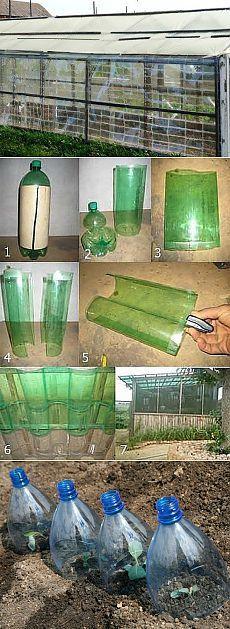 Теплица из пластиковых бутылок. Мастер-класс + видео | Домохозяйка