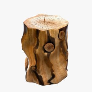 Natural Wood Stump Side Table