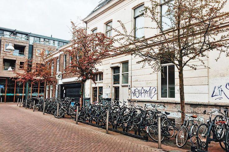 Nijmegen, Netherlands   bike - travel - travel tip - fall trip - cute bike - photo - eurotrip - viagem europa - o que fazer na holanda - bicicleta - dicas de viagem - dica de viagem - blog de viagem - Holanda - primavera na Holanda - Ariadne Cretella