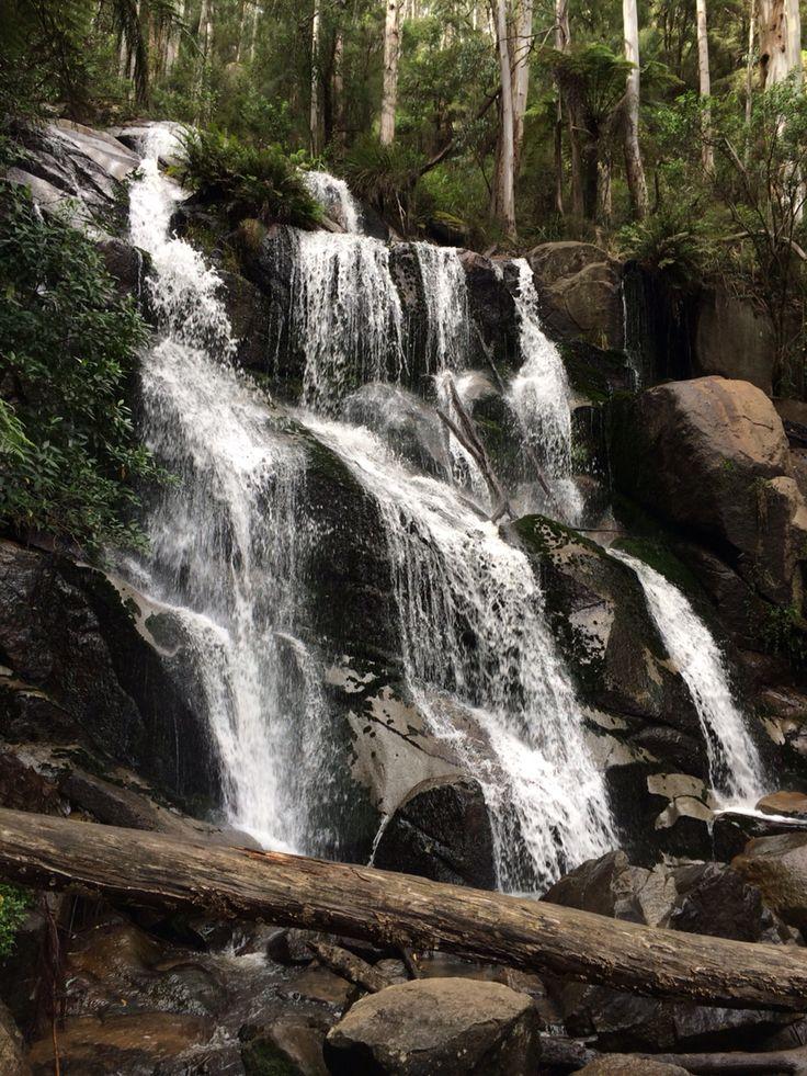 Toorongo Falls, Noojee Vic