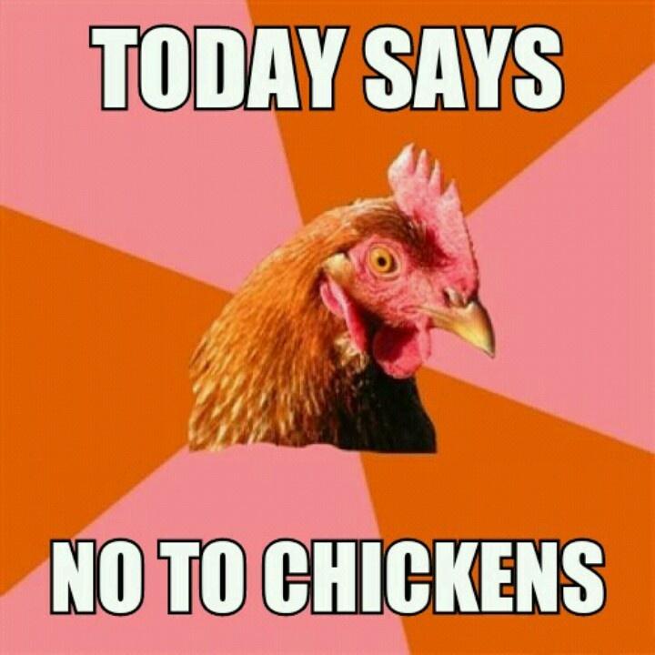nope chickens