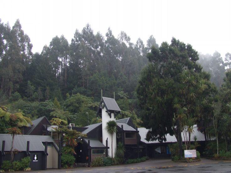 <ニュージーランド観光情報> Rotorua の Rainbow Springs ニュージーランド留学の無料相談!