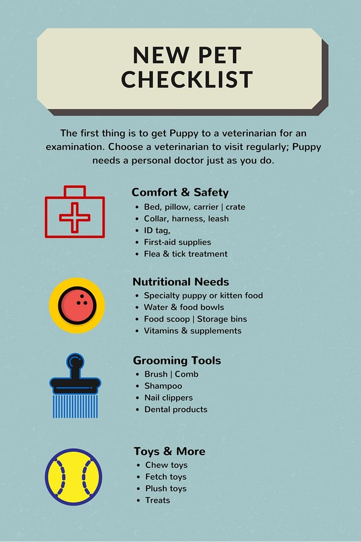 Another great checklist for when you bring home a new pet
