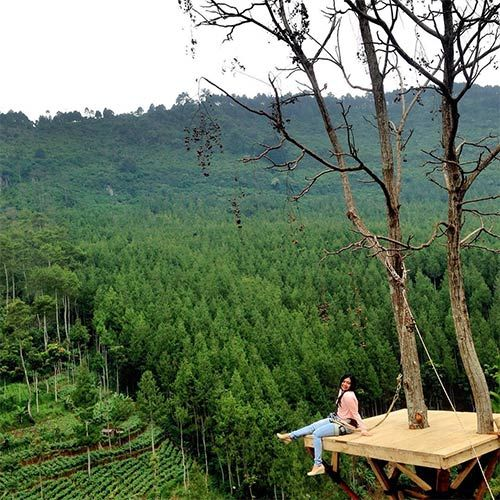 Sky Tree The Lodge Maribaya Lembang