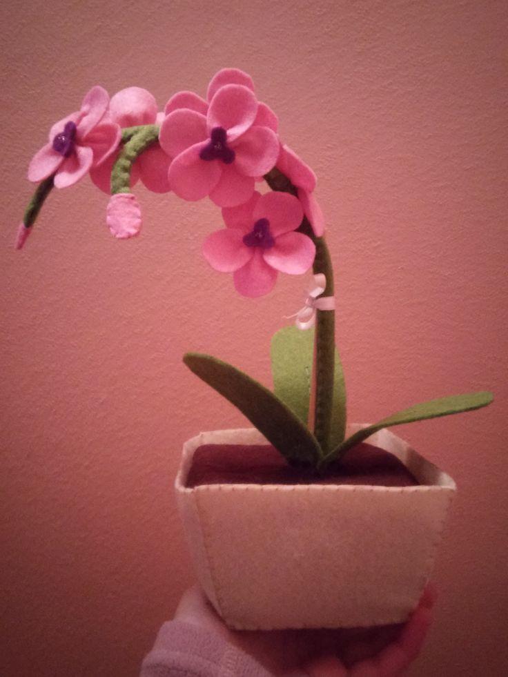 Planta/Orquídea feita em feltro!