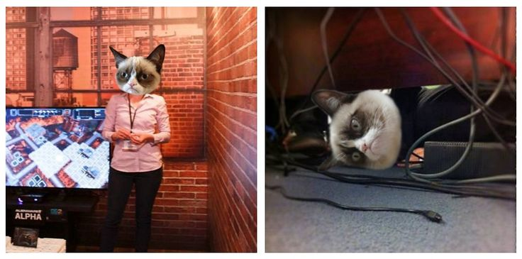 Today is World Cat Day. To celebrate, we turned Dacey and Mark into Grumpy Cat. We think they look puuuurfect.