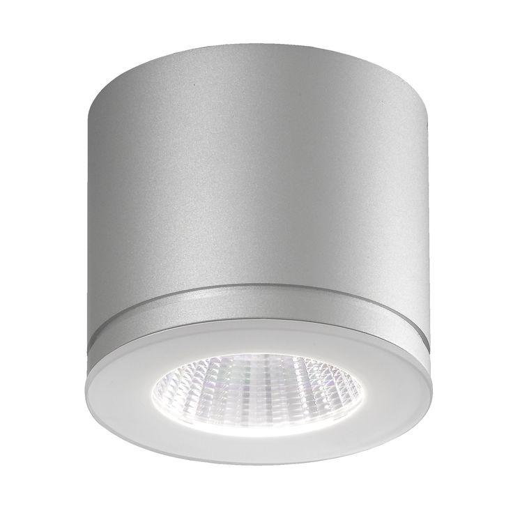 Newton 55 In -und Outdoor LED Deckenstrahler grau -  - A054504.002