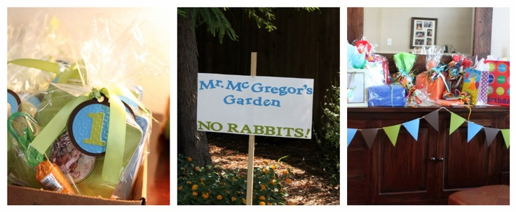 Peter Rabbit Party - this looks easy and fun to do!