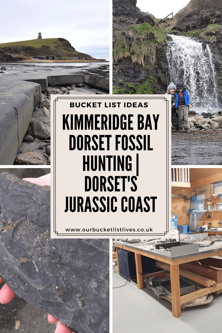 Fossil Hunting at Kimmeridge bay in Dorset, England. Hunting for fossils on Dorset's Jurassic coast. What to expect from a day out at Kimmeridge #fossilhunting #jurassiccoast #fossils #kimmeridge #dorset #dayout