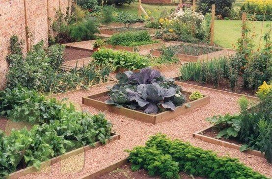 Loving this raised bed garden design - beautiful and functional. How is your garden looking today...