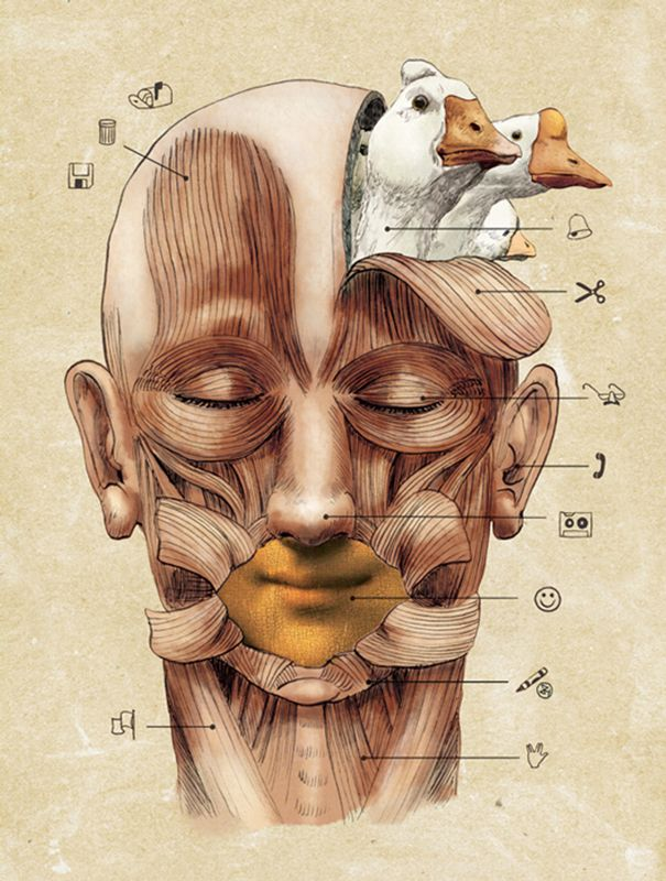 Ilustracion | Jose Rosero
