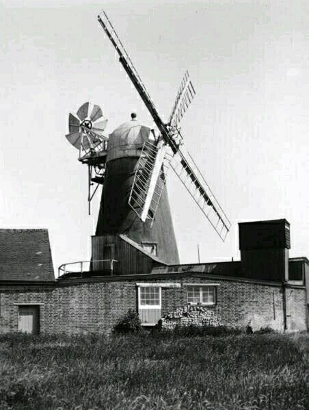Barnham mill, near Bognor Regis. Pictured in the mid 1930s,after ceasing work by wind power. Although the sails were taken down in the 1950s it continued to grind animal feed by electricity until 1988.Today incorporated into a out of town shopping centre it only has sweep arms or stocks.