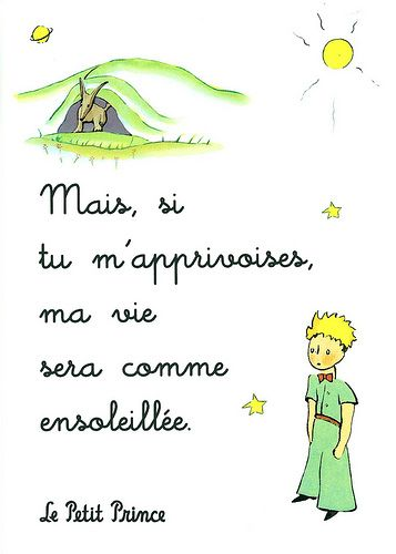 le petit prince: when you tame me, my life will be like the sun
