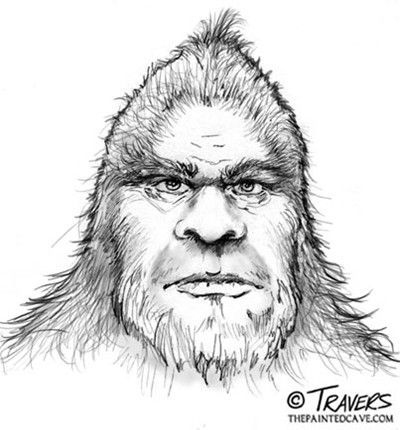 Sketch by Pete Travers of a wood ape seen in 1989 near