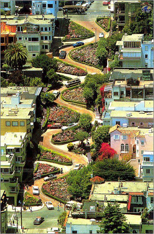 Lombard Street - San Francisco: San Francisco California, Lombard St., Lombard Street, Favorite Places, Cities, Lombardstreet, Sanfrancisco, Memories, Roads
