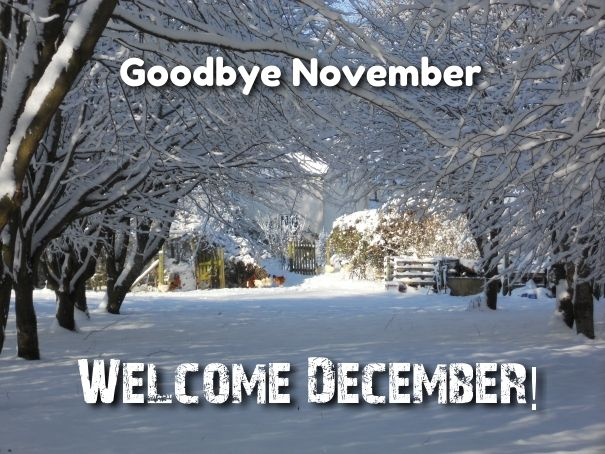 Goodbye November welcome December Quotes images