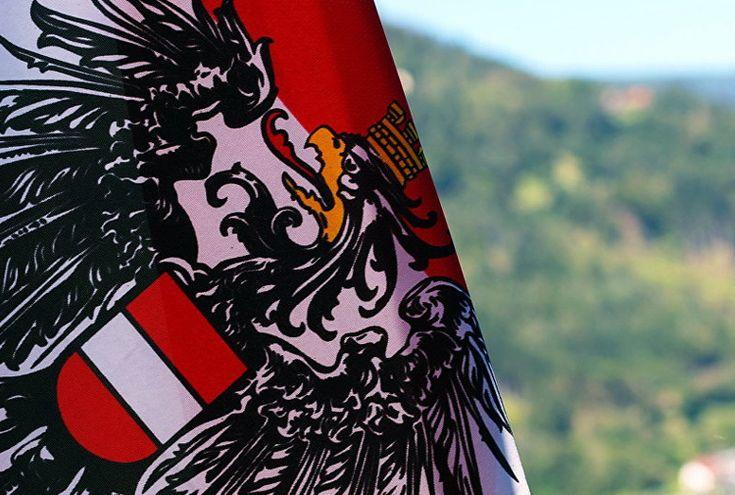 Avusturya'da anarşi: Yüzlerce insan devleti reddediyor - Gazete Karınca