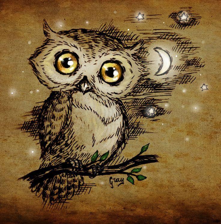 Free Owl Wallpapers: Best 25+ Owl Wallpaper Iphone Ideas On Pinterest