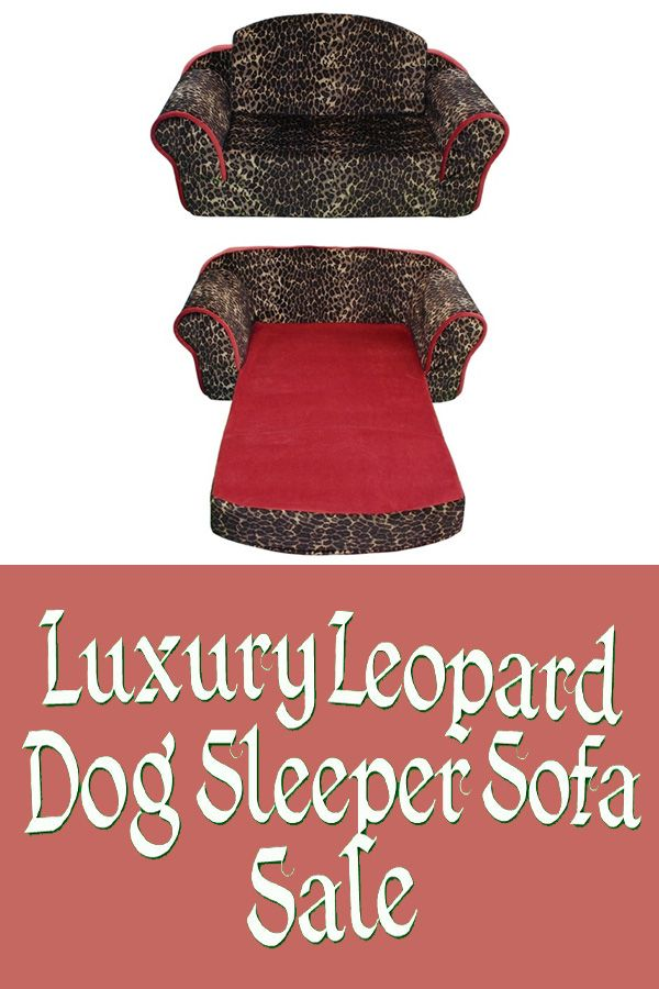 The Pet Flys Leopard Sleeper Sofa allows your dog to enjoy their very own place to sleep. Designed with your pet's comfort in mind.   Click Here => https://www.dailyoffersandsteals.com/collections/pet-beds-and-blankets/products/pet-flys-luxury-leopard-dog-sleeper-sofa-sale