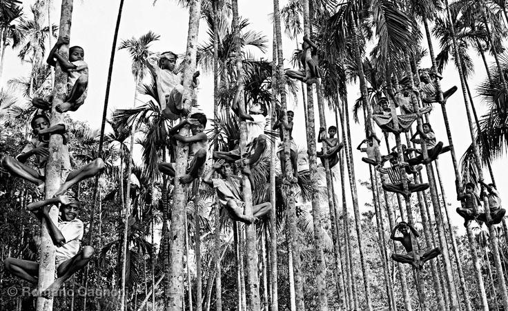 Bangladesh, 1971. By Romano Cagnoni.