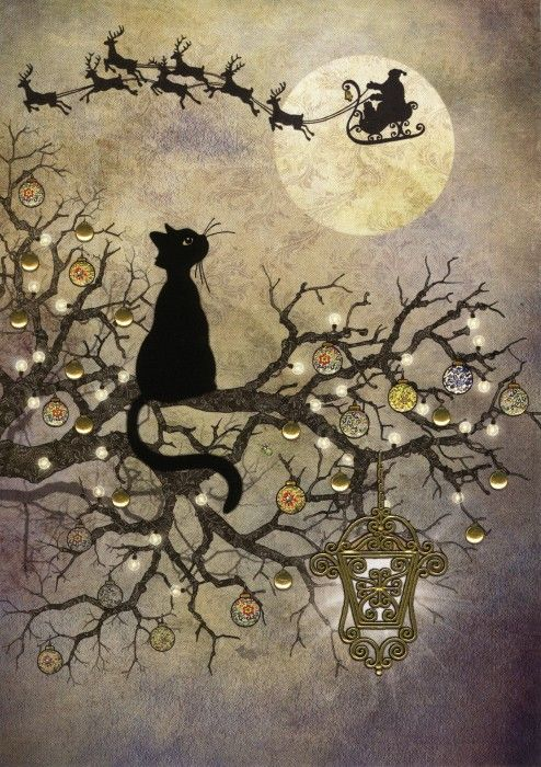 Jane Crowther                                                                                                                                                                                 More